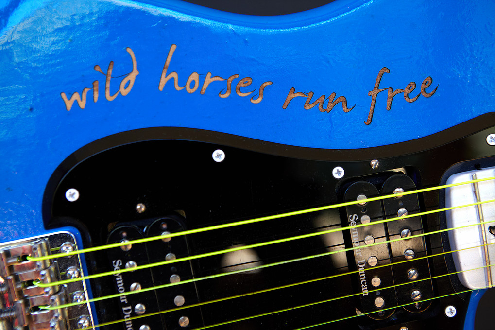 The Legend - Blue Guitar Project
